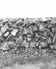 Stone wall in Oranmore 2_c_thumb.jpeg